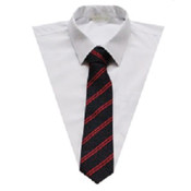 Lower School Tie
